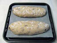 20080126secondleaven.jpg
